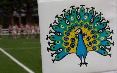 RFU Rugby 365 incentive